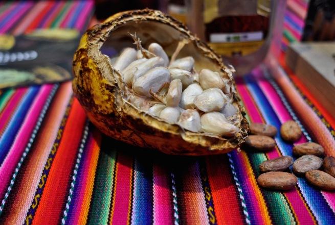 cacaofestival_kitchenhabitscom1