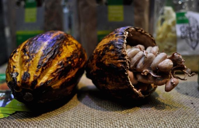 cacaofestival_kitchenhabitscom2