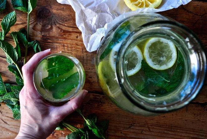 lemonade_kitchenhabitscom4